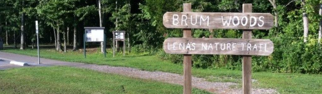 Brum Woods